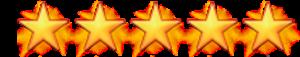 Hans Schouten 5 sterren op Google recensies